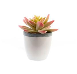 Plante artificielle céramique 10X12 cm avec pot beige