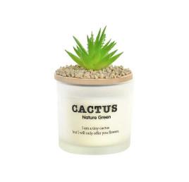 Bougie CACTUS en verre blanc 8x8x13 cm