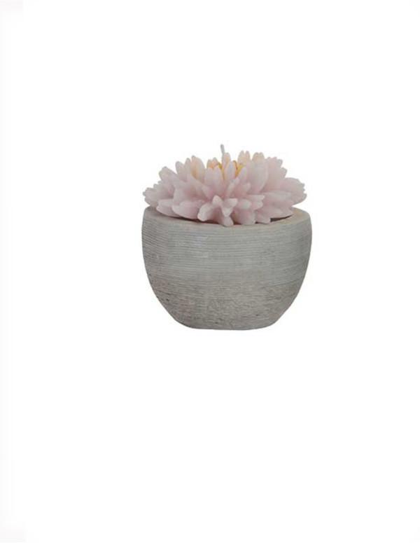 Bougie fleur en ciment cire 9x10