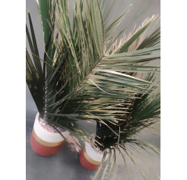 Pack touffe de palmier